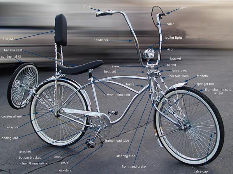 Bikes Cruisers Cruiser Bicycle Diagram
