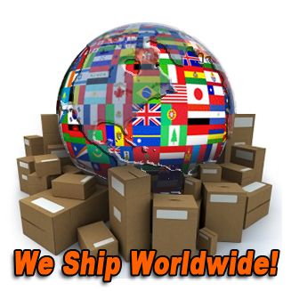 Image result for worldwide shipping logo