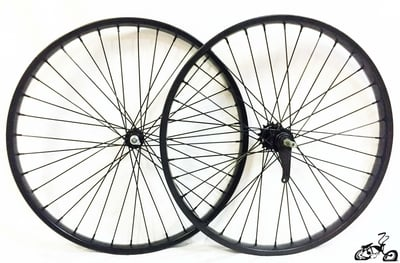 "26"" 36 Spoke Coaster Wheel Set - BLACK"